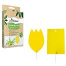 GreenProtect kamerplanten insectenval - 10 stuks