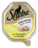 Sheba delicatesse gevogelte gelei 85g
