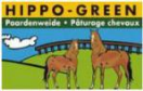 Graszaad Hippo-Green (paardenweide) 15kg