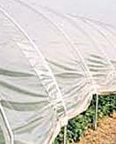 Plastiekfolie serre EVA 8 m breed