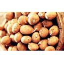 Plantaardappelen Gourmandine - 1 kg