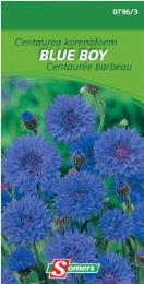 Centaurea Korenbloem Blue Boy