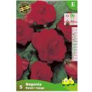 Bloembollen Begonia dubbele rood